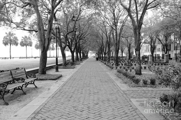 Park Bench Photograph - Charleston Waterfront Park Walkway - Black And White by Carol Groenen