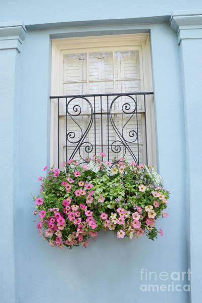 Window Box Photograph - Charleston Window Box Flower Photography - Charleston Rainbow Row Blue Aqua Dreamy Flower Window Box by Kathy Fornal