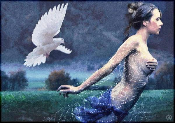 Dove Digital Art - Chased By Purity by Gun Legler