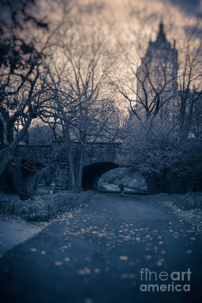 Photograph - Chased Through Central Park by Edward Fielding