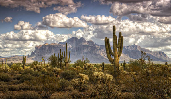 Sonoran Desert Photograph - Chasing Clouds Two  by Saija  Lehtonen