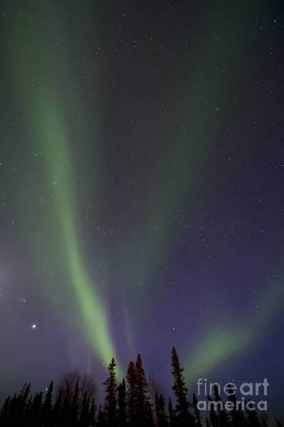 Natural Light Photograph - Chasing Lights by Priska Wettstein