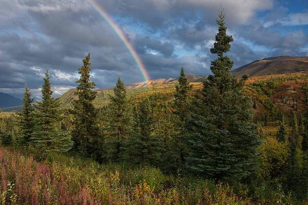 Photograph - Chasing Our Pot Of Gold by Darlene Bushue