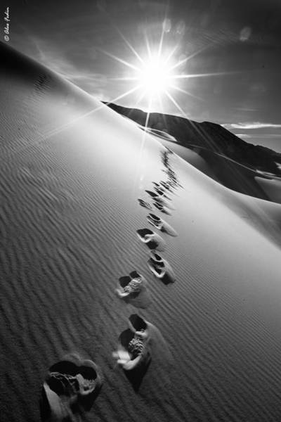 Photograph - Chasing Sun by Alexander Fedin