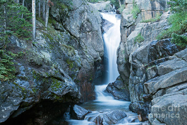 Photograph - Chasm Falls Fall River In Rocky Mountain National Park by Fred Stearns
