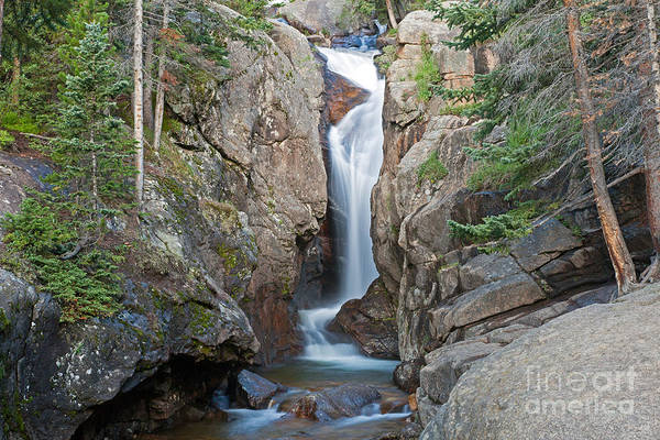 Photograph - Chasm Falls On Fall River In Rocky Mountain National Park by Fred Stearns