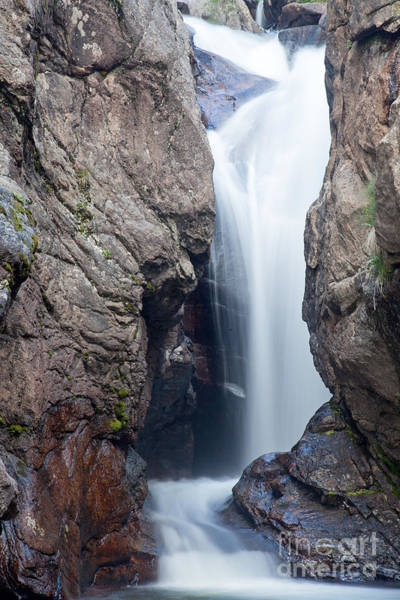 Photograph - Chasm Fallsfall River In Rocky Mountain National Park by Fred Stearns