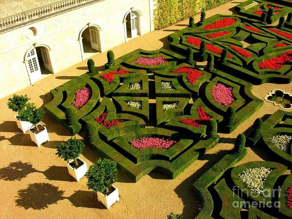 Villandry Photograph - Chateau Villandry Garden by Anne Gordon