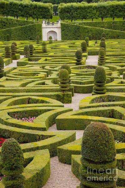 Villandry Photograph - Chateau Villandry Garden by Brian Jannsen