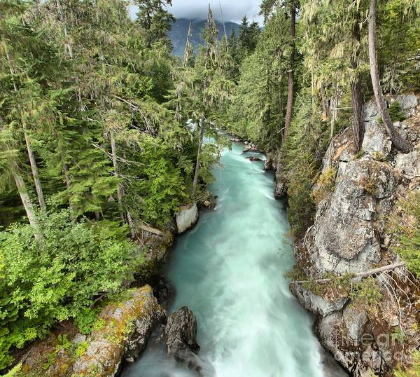 Photograph - Cheakamus River Through The Gorge by Adam Jewell