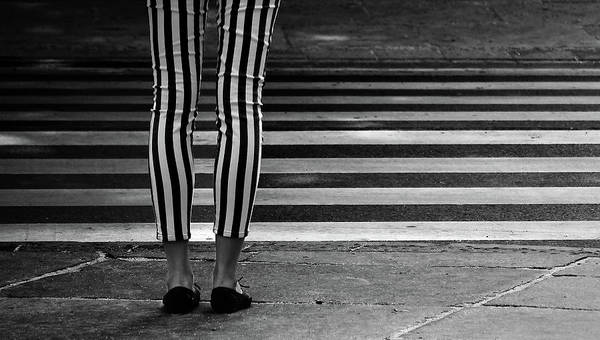 Zebra Pattern Photograph - Checkered by Anna Niemiec
