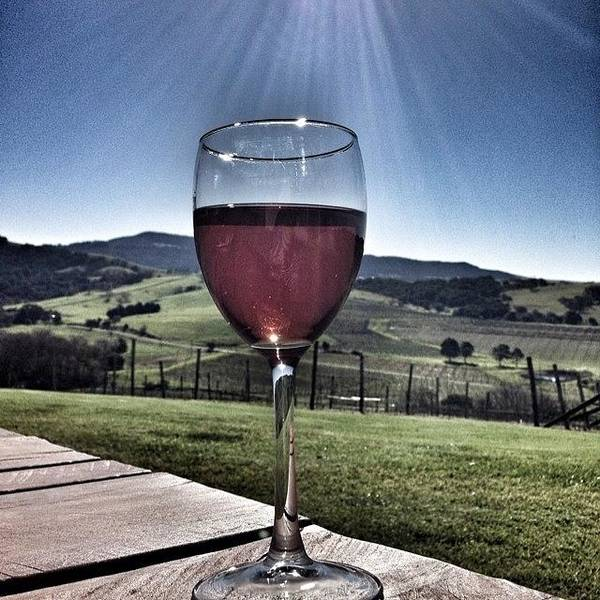Wine Wall Art - Photograph - Cheers! #rose #wine #sunshine #country by Pix Jax
