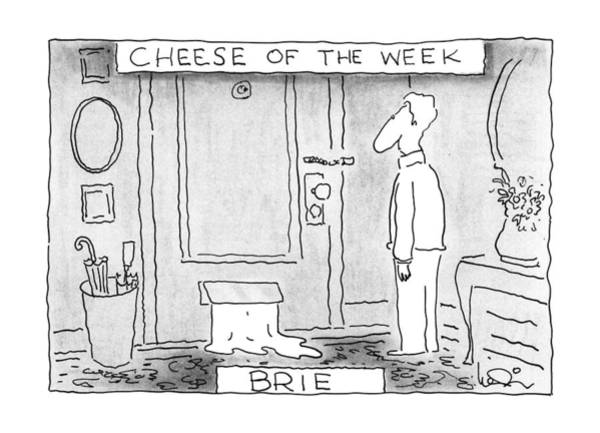 Cheese Drawing - Cheese Of The Week - Brie by Arnie Levin
