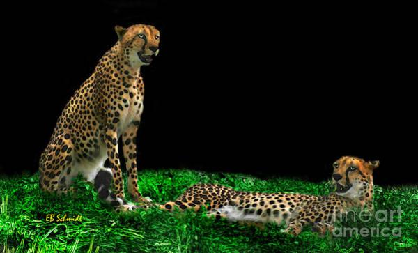 Digital Art - Cheetahs by E B Schmidt