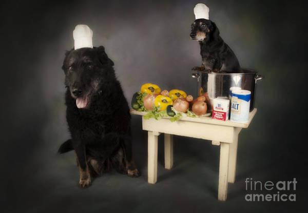 Purple Carrot Photograph - Chef Tony And His Sidekick Guido by Denise Oldridge