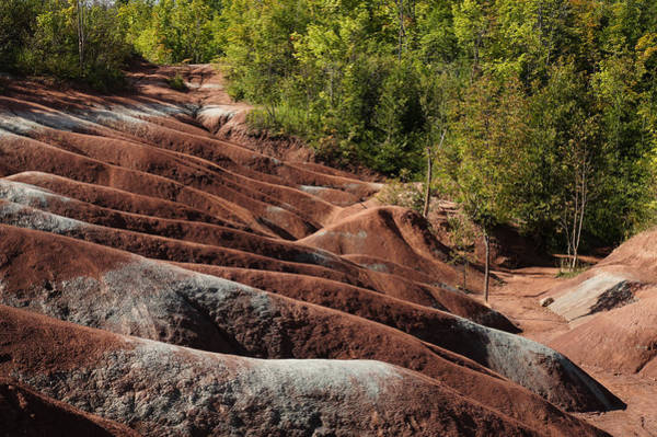 Strange Land Wall Art - Photograph - Mars On Earth - Cheltenham Badlands Ontario Canada by Georgia Mizuleva