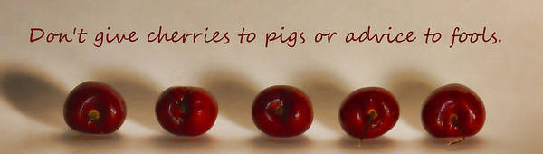 Photograph - Cherries To Pigs by Grace Dillon