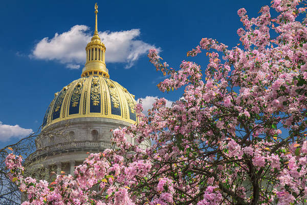 Photograph - Cherry Blossom At Wv Capitol by Mary Almond