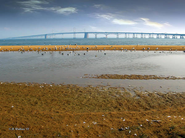 Sandy Point State Park Photograph - Chesapeake Bay Bridge by Brian Wallace