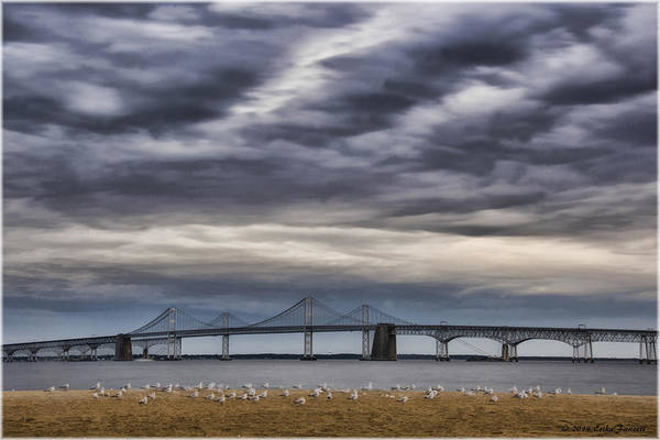 Photograph - Chesapeake Bay Bridge by Erika Fawcett