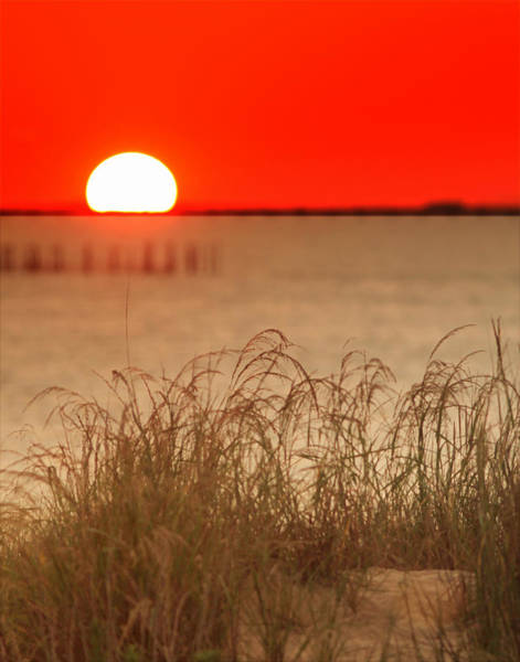 Photograph - Chesapeake Sunset by Pete Federico