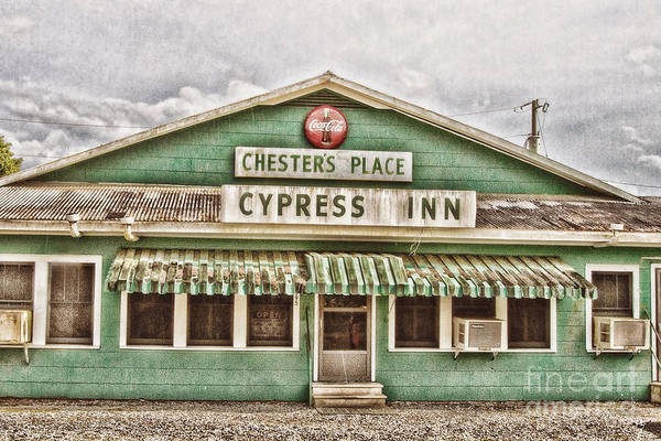 Donner Photograph - Chester's Place by Scott Pellegrin