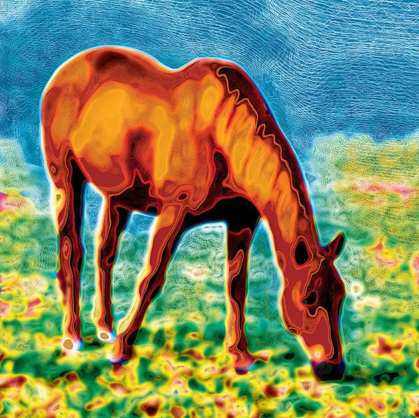 Digital Art - Chestnut Dreamscape by David Davies