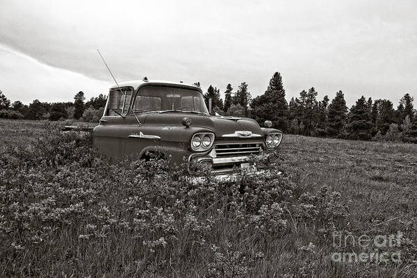 Chevrolet Apache Colorado Art Print