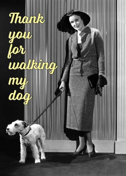 Dog Walker Photograph - Thank You To Dog Walker Greeting Card by Communique Cards