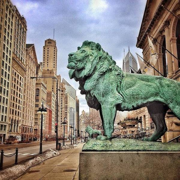 Wall Art - Photograph - Chicago Art Institute Lion Statue by Paul Velgos