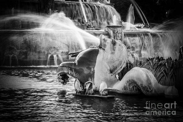 Seahorse Photograph - Chicago Buckingham Fountain Seahorse In Black And White by Paul Velgos
