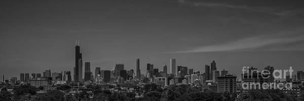 Photograph - Chicago Illinois Skyline Black And White by David Haskett II