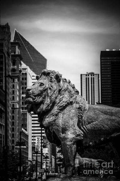 Chicago Skyline Art Photograph - Chicago Lion Statues In Black And White by Paul Velgos