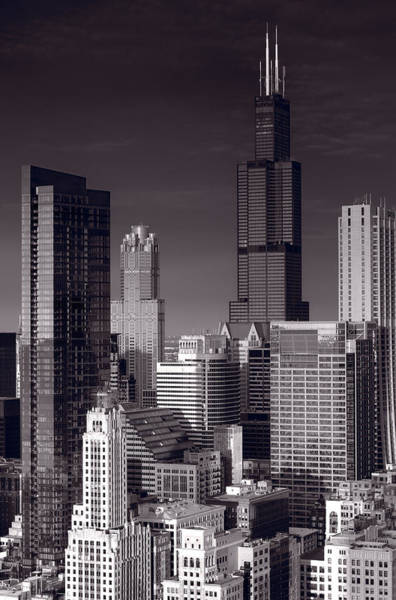 Loop Photograph - Chicago Loop Towers Bw by Steve Gadomski