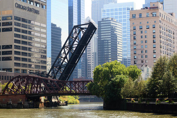 Chicago Photograph - Chicago River Scene, Chicago, Illinois by Amanda Hall / Robertharding