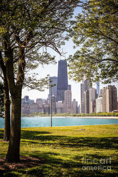 Sears Tower Photograph - Chicago Skyline And Hancock Building Through Trees by Paul Velgos
