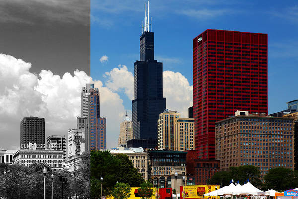 Photograph - Chicago Skyline Sears Tower by Patrick Malon