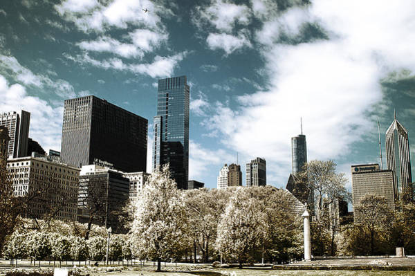 Photograph - Chicago Style  by Milena Ilieva