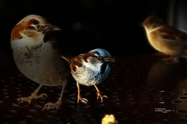 Digital Art - chickadee 9162A - F by James Ahn