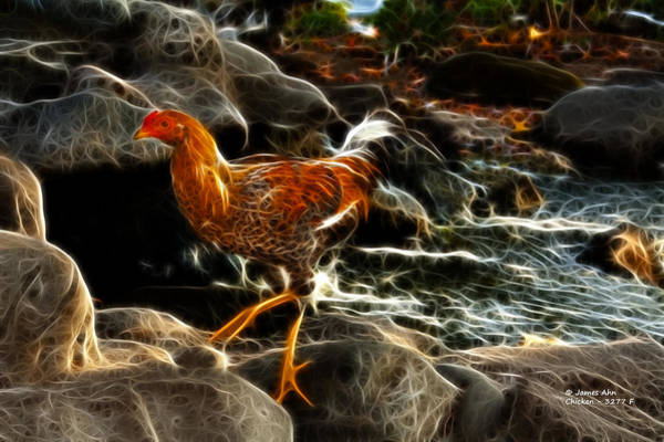 Digital Art - Chicken 3277 F by James Ahn