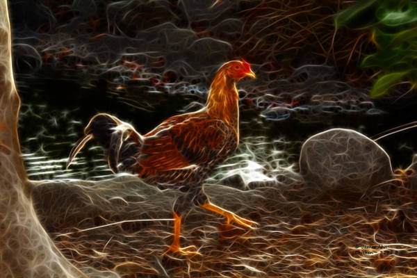 Digital Art - Chicken 3278 F by James Ahn