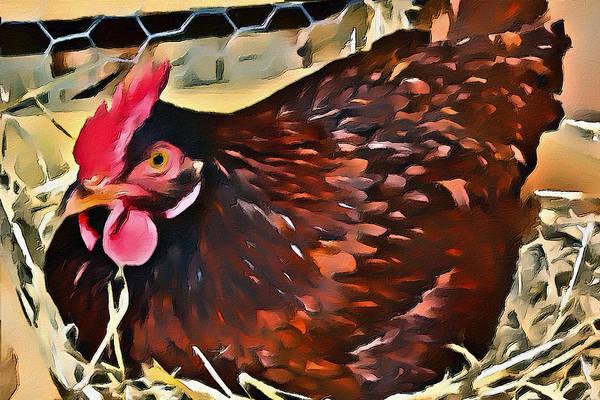 Digital Art - Chicken by Patrick M Lynch