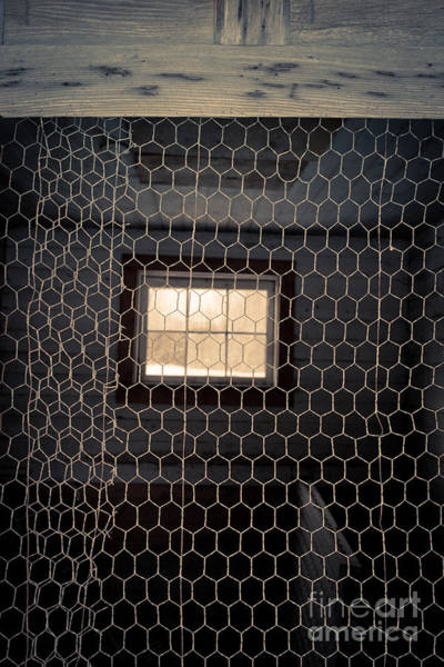 Photograph - Chicken Wire On A Door Of An Old Chicken Coop by Edward Fielding