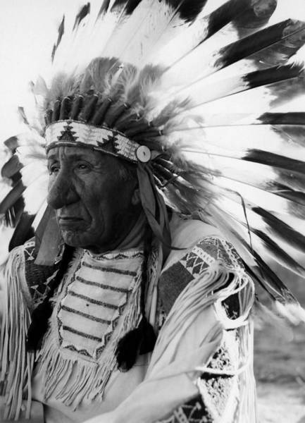 Native American Photograph - Chief Red Cloud by War Is Hell Store