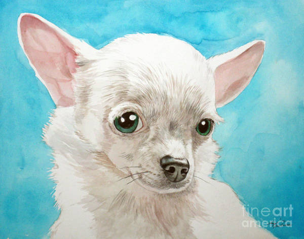 Painting - Chihuahua Dog White by Christopher Shellhammer