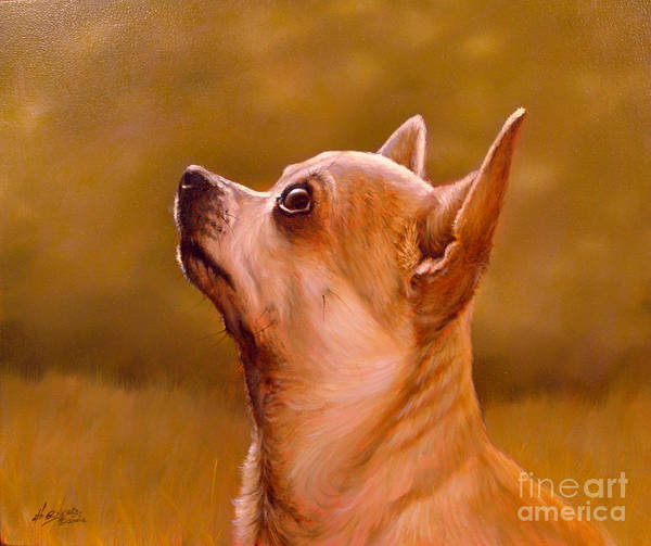 Painting - Chihuahua Portrait by John Silver