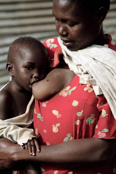 Wall Art - Photograph - Child Breastfeeding by Mauro Fermariello/science Photo Library