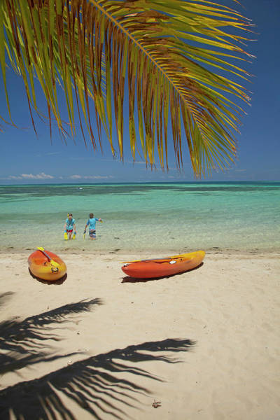 Kayak Photograph - Children, Kayaks And Palm Frond by David Wall