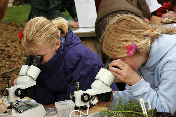 Botanic Photograph - Children Looking Through Microscopes by Botanic Garden/oxford University Images
