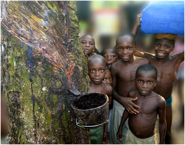 Photograph - Children Of The Rubber Forest by Wayne King
